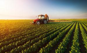 Agrar-, Forst- und Ernährungswissenschaften